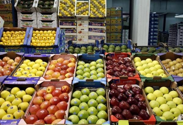 distribucion-espanola-alemana-une-fepex-normalizar-mercados-horticolas_1_736758.jpg